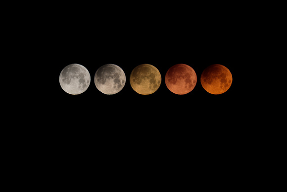 Super Blue Blood Moon Color Phases
